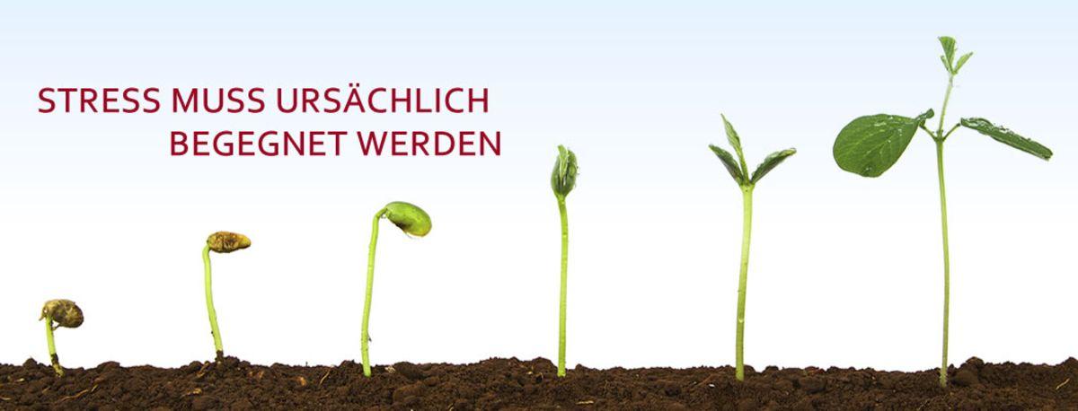 csm_ursaechlich_ce520ac8ab